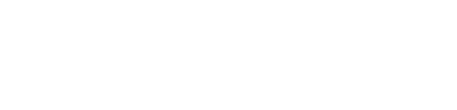 The BearStar Group